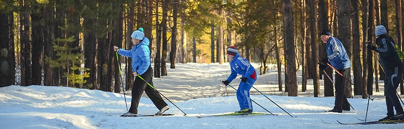 family skiing in forest