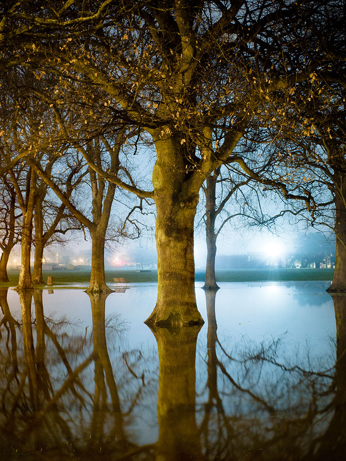 Cover-More New Zealand Facebook photo competition winner: Trees at night in a flooded park in Christchurch