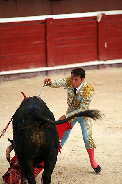 Bullfighting in Spain has decreased in popularity in recent years but remains an important part of the culture.