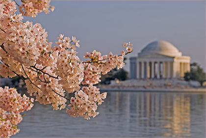 The Jefferson Memorial in DC is one of the many free attractions the city has to offer.