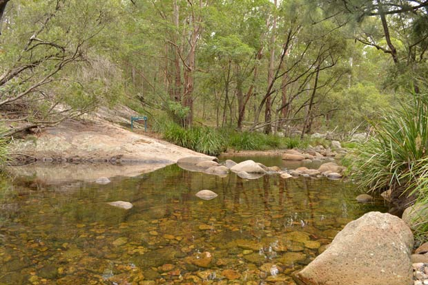 Mt Barney creek