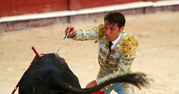 Bull fighting Spain