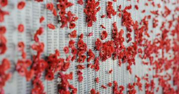 Poppy wall war memorial canberra
