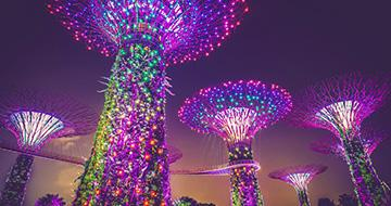 super tree grove singapore